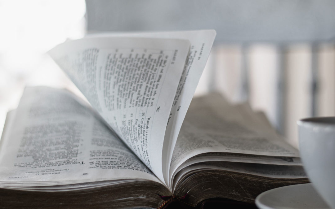 'The Wonder of the Word: Hearing the Voice of God in Scripture' & More Great Reads
